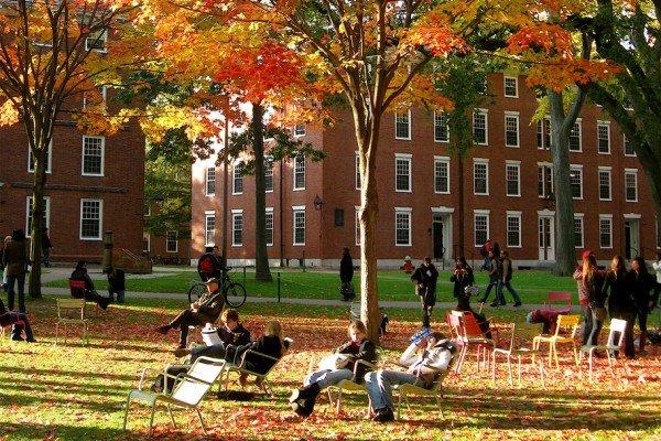 Trường Đại học Havard tuyển sinh như thế nào? Điều kiện vào Đại học Havard